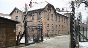 Prostytutki w Auschwitz